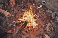 Cooking favorite food. Close up top view of young people roasting marshmallows over a bonfire while camping outdoors stock photography