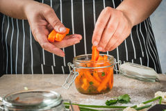 Cooking fermented preserved food stock photography