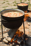 Cooking on a fire. Fish soup on a fire. Pilaf on a fire. Food in a cauldron on a fire. Food outdoors. Cooking outdoors. Cooking in nature on the cauldron Royalty Free Stock Images