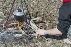 Cooking on a fire at spring. Close view of caldron over the campfire. Pot over the fire in the forest. Cooking on a fire. Spring camping concept. Man`s hand puts stock photo