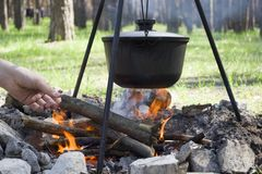 Cooking on a fire at spring. Close view of caldron over the campfire. Pot over the fire in the forest. Cooking on a fire. Spring camping concept. Opening of the royalty free stock photo