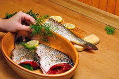 Cooking fish Stock Images