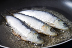 Cooking fish Royalty Free Stock Photos