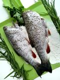 Cooking fish, carcasses of raw fish. And flour royalty free stock photo