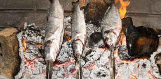 Cooking fish grilled over hot coals bonfire Stock Images