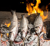 Cooking fish grilled over hot coals bonfire Royalty Free Stock Photos