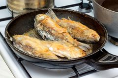 Cooking fish in the home kitchen, useful and nutritious food_. Cooking fish in the home kitchen, useful and nutritious food Royalty Free Stock Image