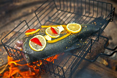 Cooking fish over open fire Royalty Free Stock Image