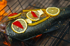Cooking fish over open fire Stock Photography