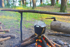 Cooking fish soup on the fire. In the forest camp Stock Images