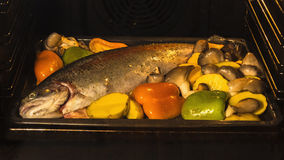 Cooking fish and vegetables in baking oven Royalty Free Stock Photography