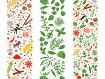 Cooking flat herbs and spices organised in three ribbons Royalty Free Stock Photography