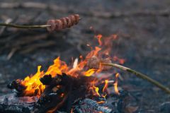 Cooking food at a campfire in the open air. Royalty Free Stock Photo