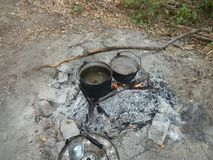 Cooking food at a campsite deep within forest. royalty free stock photo