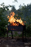 Cooking food on fire. Strong fire on the grill Royalty Free Stock Images