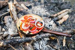 Free Cooking Food On An Open Fire In Nature. Stock Photography - 100790362