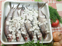 Cooking a fresh  fish. And bow in a cook griddle Royalty Free Stock Photography