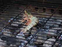 Cooking fresh tiger prawn grilled Royalty Free Stock Photos