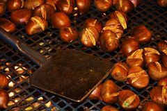Cooking fried chestnuts Royalty Free Stock Images