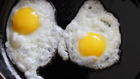 Cooking fried eggs in a frying pan stock video
