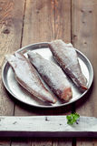 Cooking from frozen: frozen fish on a tray Stock Image