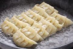 Cooking gyoza dumplings Stock Image
