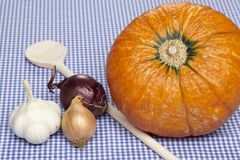 Cooking hokkaido pumpkins Stock Images