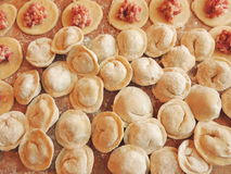 Cooking home meat dumplings. Home cooking dumplings from flour dough and minced meat. Russian traditional dumplings with meat. Raw Homemade dumplings. Russian Stock Images