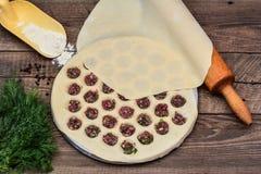 Cooking homemade pelmeni Royalty Free Stock Photography