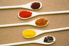 Set of spices and herbs on a corkwood. Cooking hot spicy meal. A set of four different spices in wooden spoons, corkwood background, top view Stock Photography