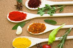 Set of spices and herbs on a corkwood. Cooking hot spicy meal. A set of four different spices in wooden spoons, fresh cherry tomatoe, garlic, rosemary and salvia Stock Photo