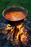 Cooking hungarian paprika potatoes royalty free stock photography