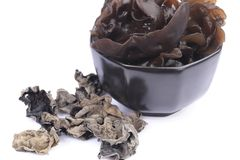 Cooking ingredient series black fungus. for adv etc. of restaurant,grocery,and others. On a white background stock photos