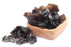 Cooking ingredient series black fungus. for adv etc. of restaurant,grocery,and others. On a white background royalty free stock images