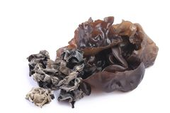 Cooking ingredient series black fungus. for adv etc. of restaurant,grocery,and others. On a white background stock image