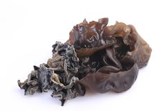 Cooking ingredient series black fungus. for adv etc. of restaurant,grocery,and others. On a white background stock images