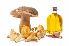 Cooking ingredients and mushrooms Royalty Free Stock Image