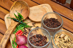 Cooking ingredients. Spice and herbs with onion and garlic on wooden board Royalty Free Stock Photo