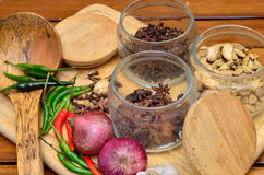 Cooking ingredients. Spice and herbs with onion and garlic on wooden board Royalty Free Stock Photos