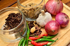 Cooking ingredients. Spice and herbs with onion and garlic on wooden board Stock Images