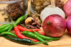 Cooking ingredients. Spice and herbs with onion and garlic on wooden board Stock Image