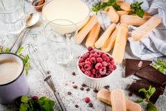 Tiramisu with mint and raspberries Stock Images