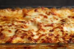 Cooking italian homemade lasagna Royalty Free Stock Photo
