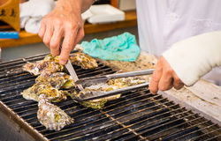 Cooking Japanese grilled Oysters Royalty Free Stock Image