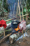 Cooking in jungle Stock Photography