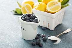 Cooking with lemons and blueberry Royalty Free Stock Images