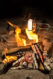 Cooking marshmallows on the camp fire. Royalty Free Stock Images