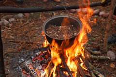 Cooking a meal in the forest Royalty Free Stock Photography