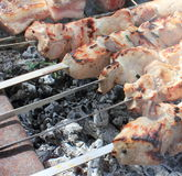 Cooking meat on the coals Stock Image