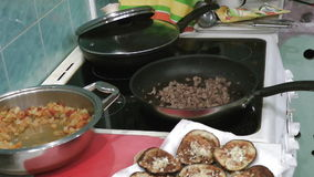 Cooking meat mesh stock video